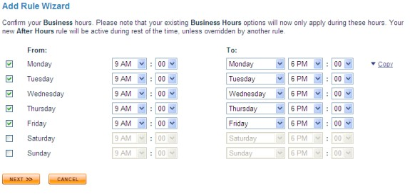 ringcentral business hours